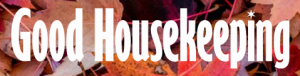 good housekeeping logo for YES feature