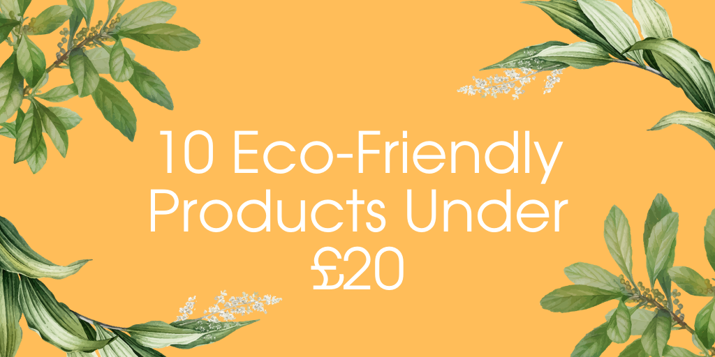 10 Eco-Friendly Products Under £20